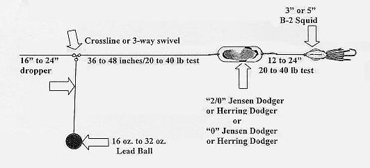 ball bouncing for halibut Tile Fish Rig Diagram Halibut Rig Diagram #17